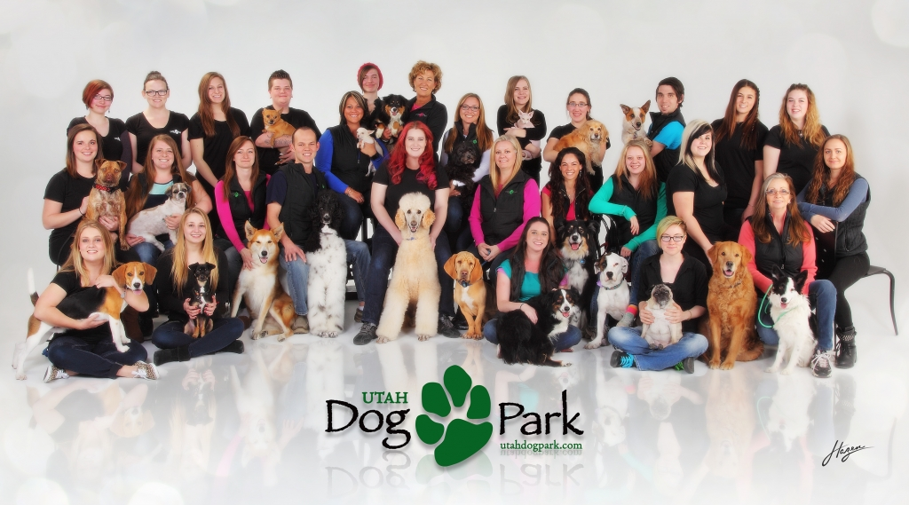 ACC DogPark Poster 2015